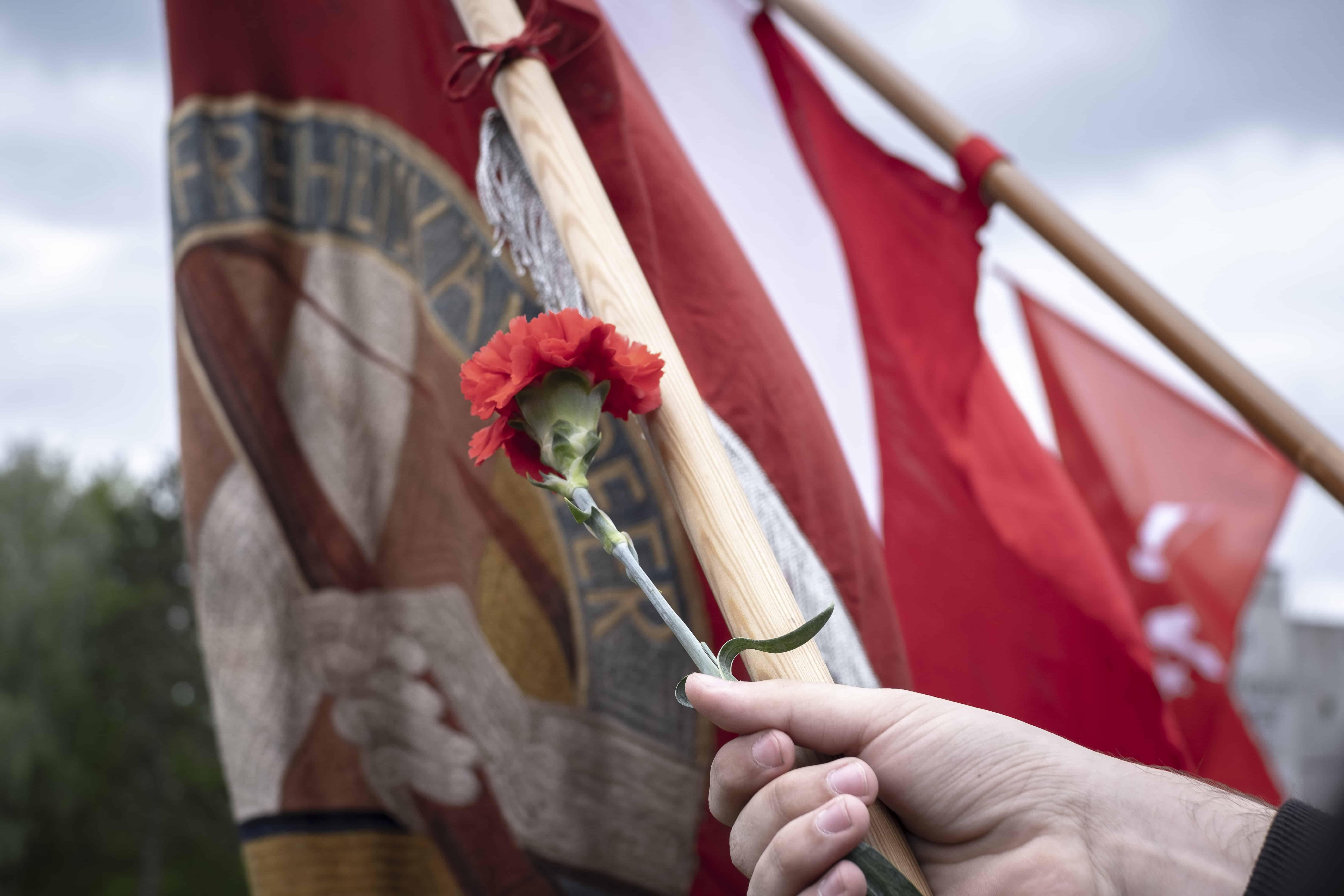 Bild mit roteln FAhnen und einer Hand mit einer roten Nelke i